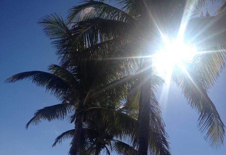 Reisebericht: Florida & Bahamas – Teil 2 floridabericht-Teil2_02