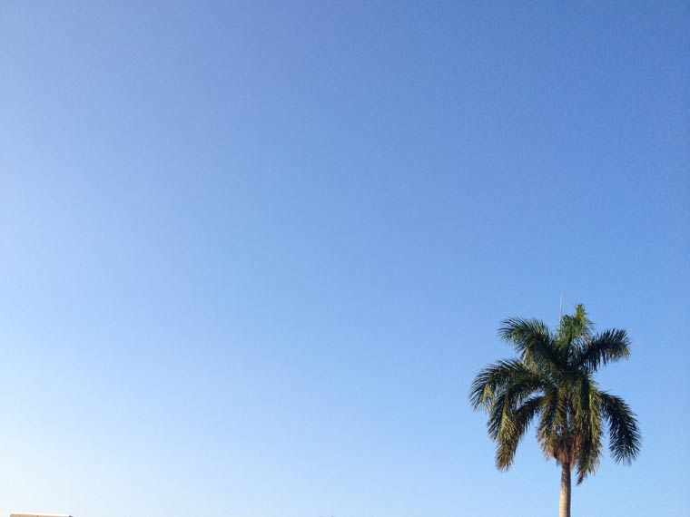 Reisebericht: Florida & Bahamas – Teil 2 floridabericht-Teil2_21