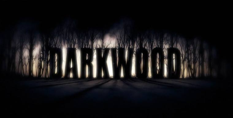 Vielversprechendes Game: Darkwood gameplay_darkwood