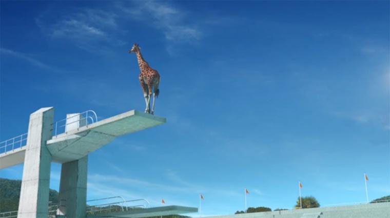 Von turmspringenden Giraffen idents_france3