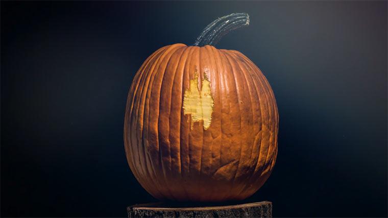 Stopmotion-Kürbisschnitzen pumpkin_lobotomy