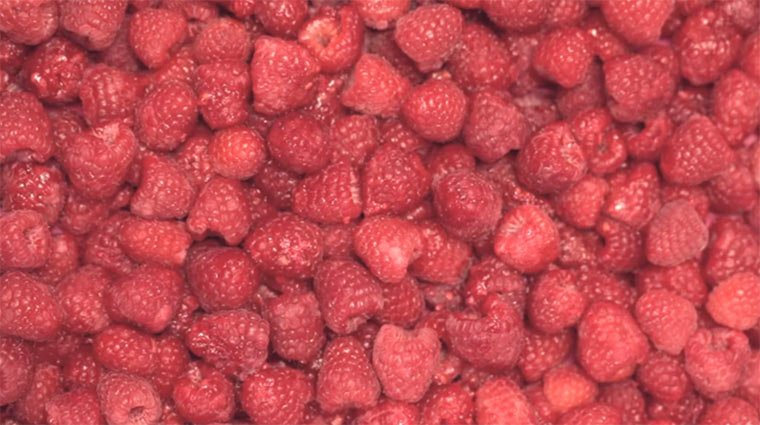 Foodporn: Himbeersoda machen raspberry_soda