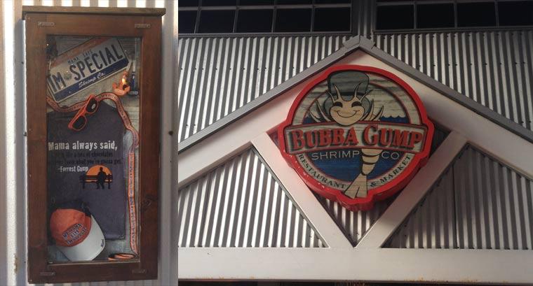Reisebericht: Florida & Bahamas - Teil 1 reisebericht_florida-bahamas_Teil-1_12