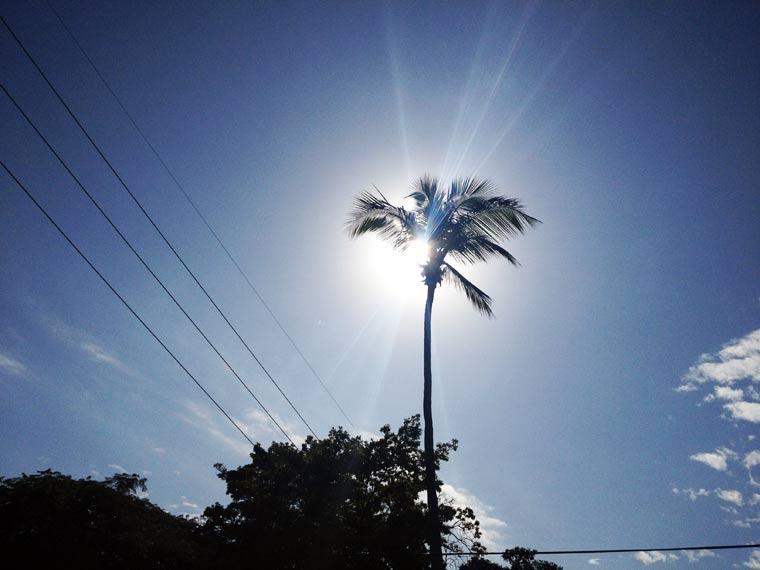 Reisebericht: Florida & Bahamas - Teil 1 reisebericht_florida-bahamas_Teil-1_24