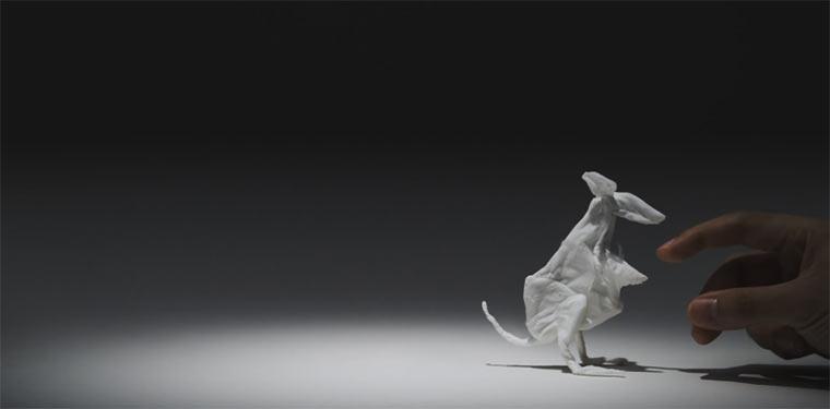 Tolle Taschentuchtiere tissue_animals