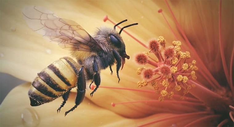Haarklein animierte 3D-Biene 3D_Bee