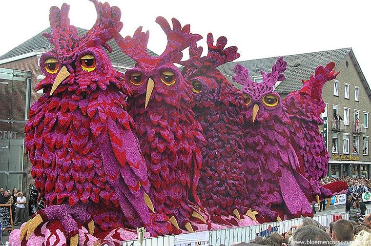 Die gigantische Blumenparade CorsoZundert_06