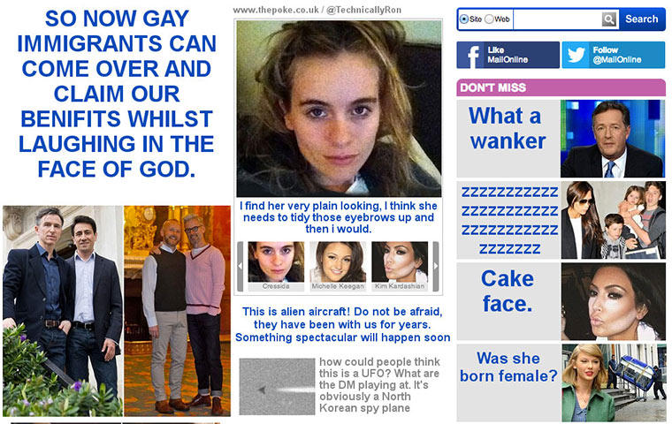 Userkommentare als Headlines in der Daily Mail