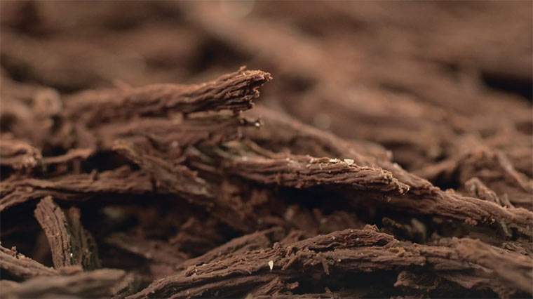 Videoportait eines Chocolatiers Le_Chocolat