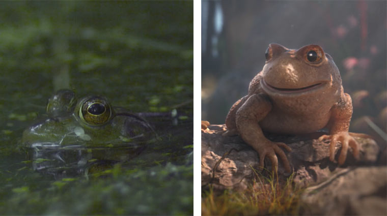 Frösche: animiert und in Slowmotion Themenabend_Frosch
