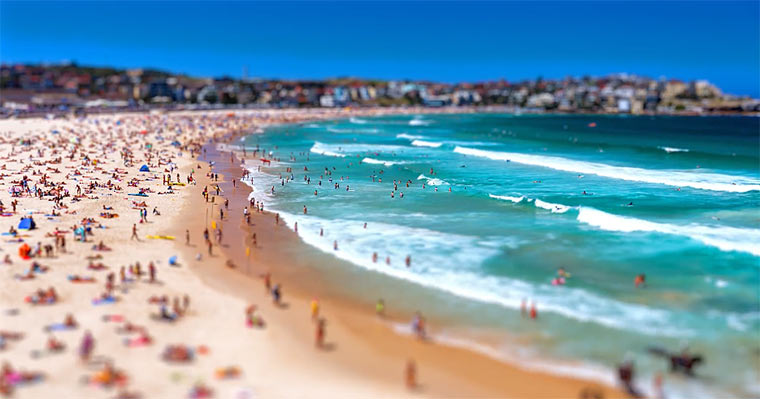 Tiny Sydney Tiny_Sydney