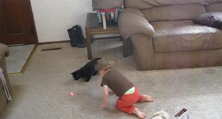 Kleinkind hilft Katze bei Laserpoint-Jagd catkidlaserpoint