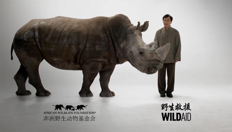 Jackie Chan vs. Nashornwilderer