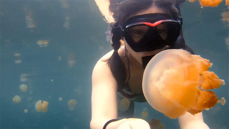 Das Mädchen und die Quallen girl_lost_jellyfish_sea