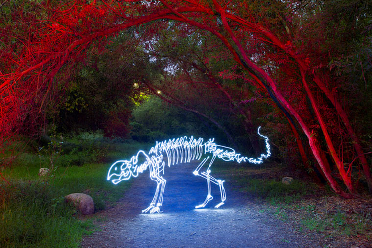 Light Paintings von Darren Pearson