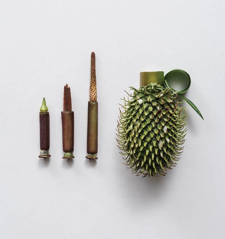 Harm Less: Waffen aus Pflanzen Harm_Less_02