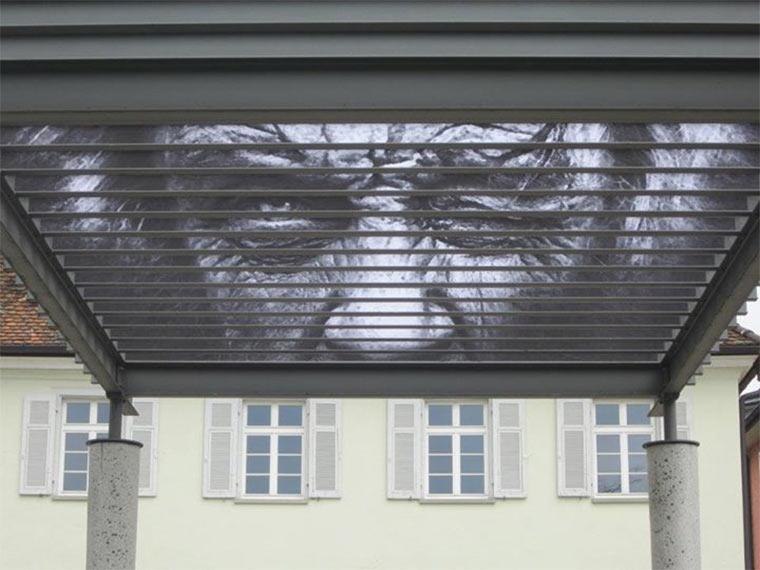Street Art: Zebrating Zebrating_06