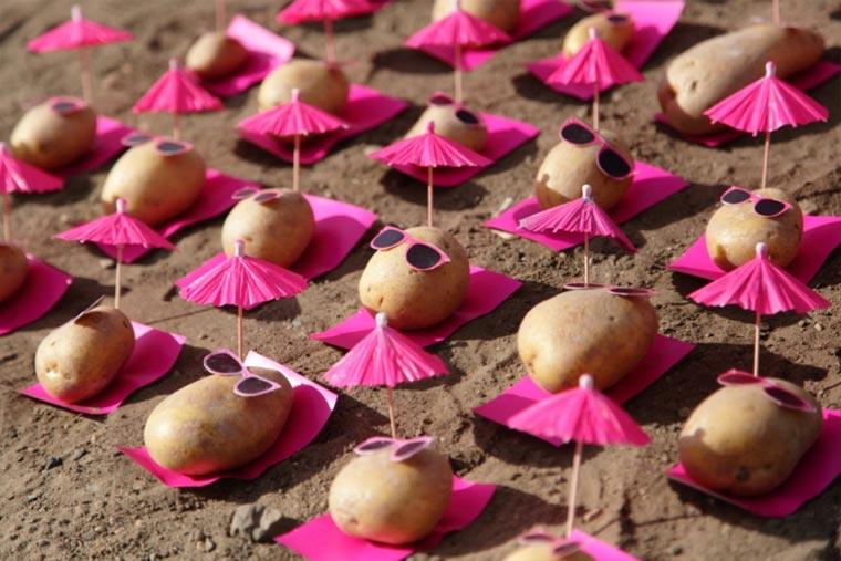 Kartoffel Street Art