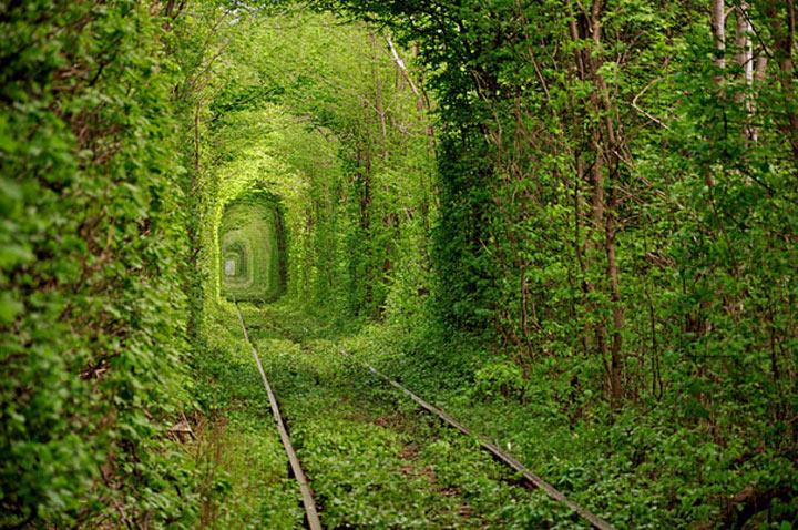 Tunnel der Liebe