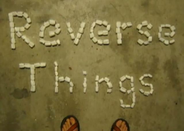sƃuıɥʇ ǝsɹǝʌǝɹ Reverse_things