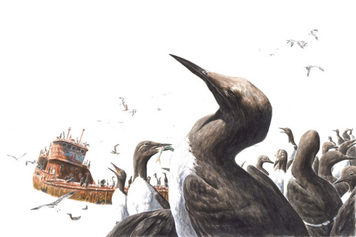 Tinten-Zeichnungen: George Boorujy
