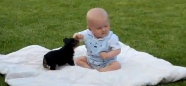 Supersweet: Baby und Hundewelpe Baby_and_puppy