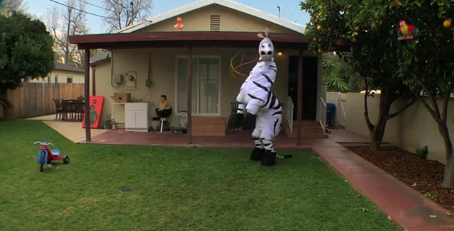 Das tanzende Zebra Dancin_zebra