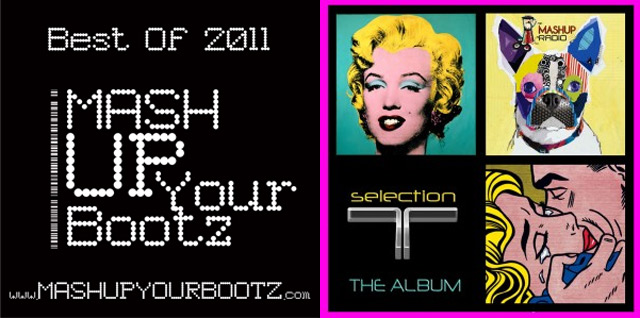 Mashup-Sampler: T Selection & MashUp Your Bootz 2011