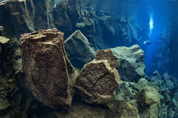 Beste Unterwasserfotografien 2010 Best_Underwater_Fotagraphy_2010_02