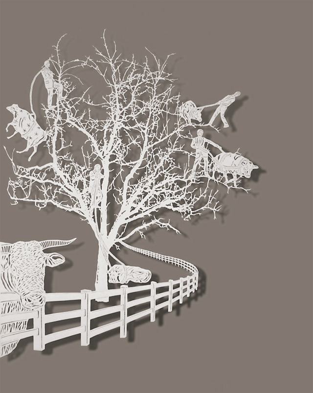 Bovey Lee Paper cuts