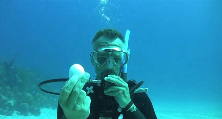 Ein rohes Ei unter Wasser aufschlagen unterwasser-ei