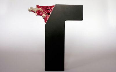 026-dissection-typographie