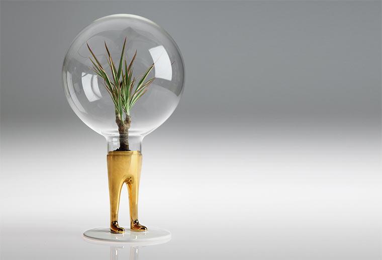 Matteo Cubic macht Pflanzen Beine Domsai_01