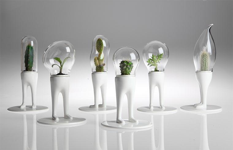 Matteo Cubic macht Pflanzen Beine Domsai_02