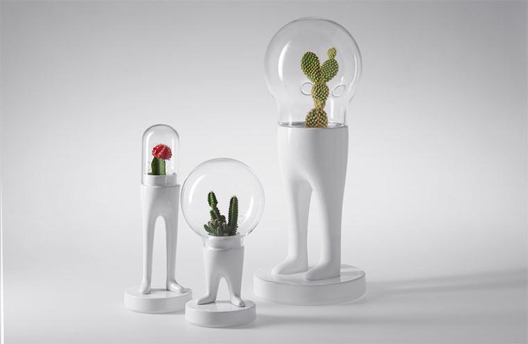 Matteo Cubic macht Pflanzen Beine Domsai_03