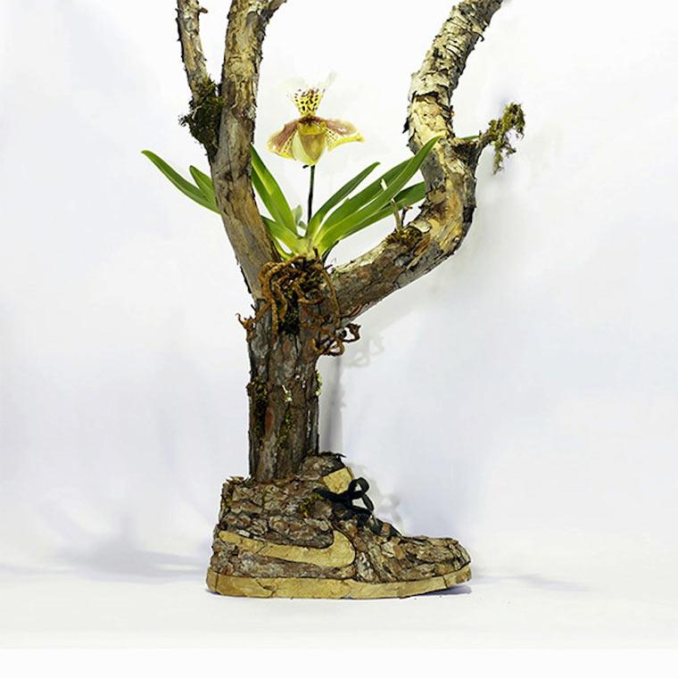 Sneaker aus Holz oder Blumen Just-grow-it_07