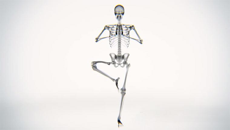 Röntgen-Yoga