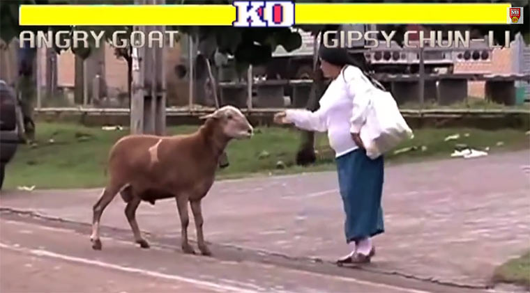 Street Fighter – Angry Goat Edition