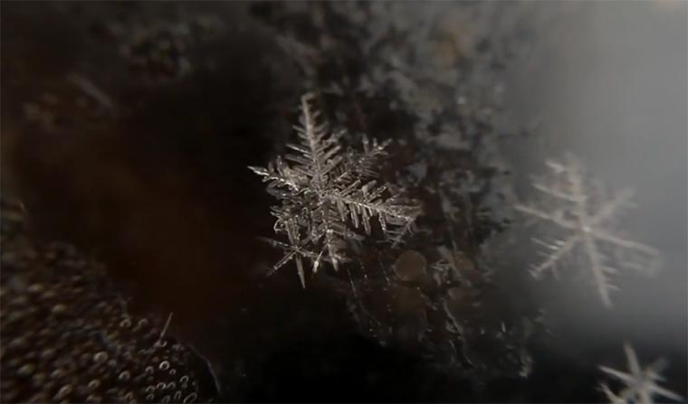 Geburt einer Schneeflocke Birth-of-a-snowflake