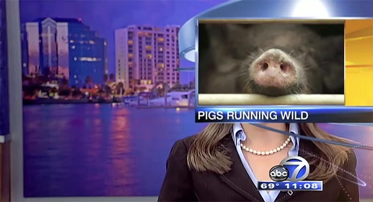 Best News Bloopers 2014
