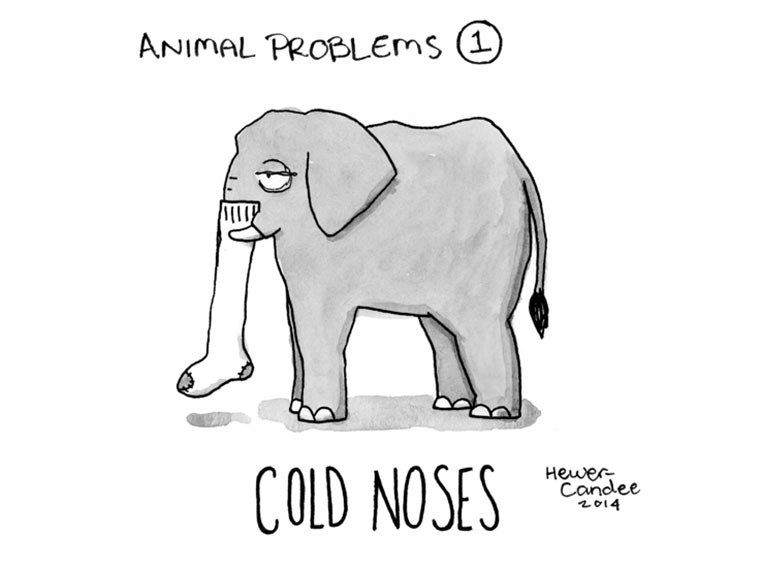 Animal-Problems_01