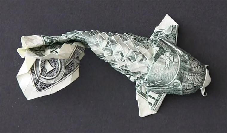 Timelapse: Dollarschein wird Koi