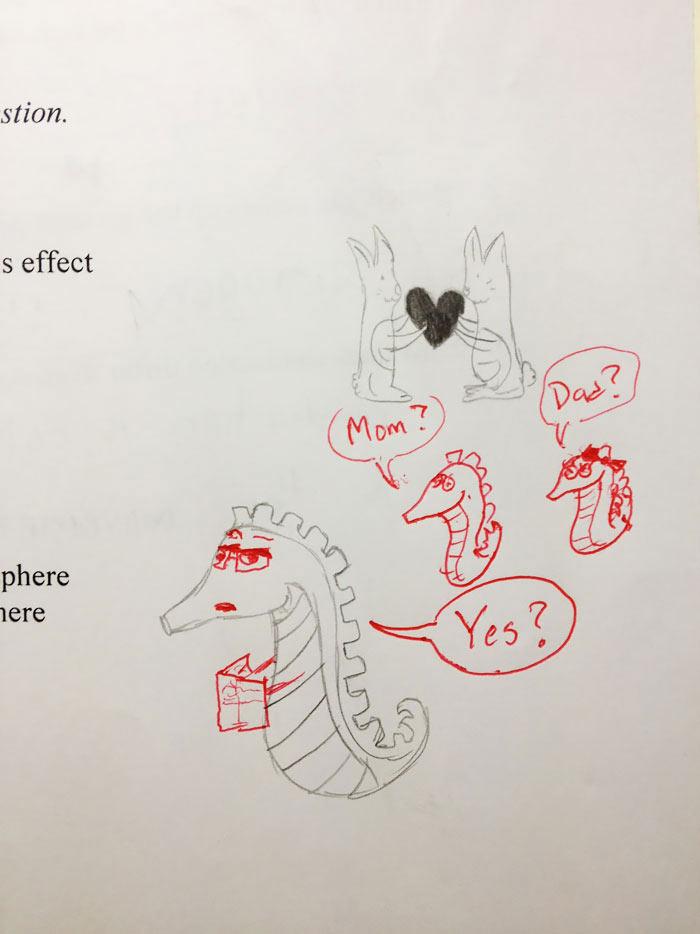 Lehrer malt Zeichnungen zuende Squeezymo_07