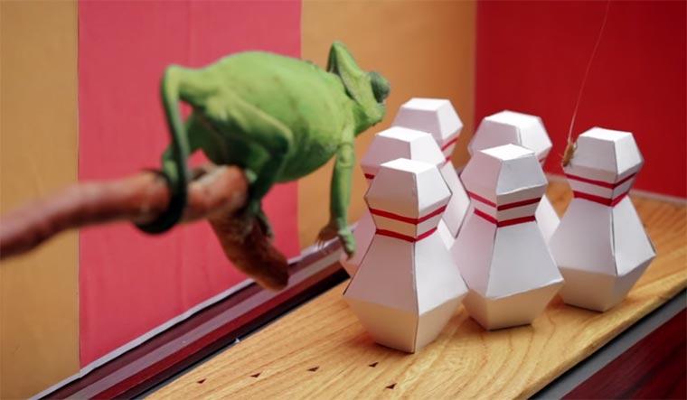 chameleon-bowling