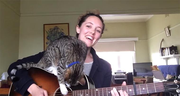 Liebliche Musik mit Katzen-Feature