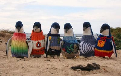Penguin-Sweaters_01