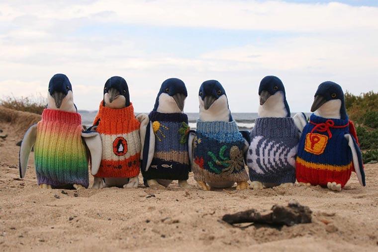 Putzige Pinguin-Pullover