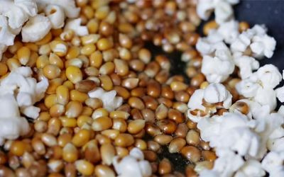 physics-of-popcorn
