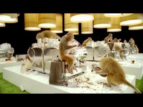 Können Affen Kaffee kochen?