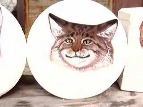 Optische Illusion: Die blickverfolgenden Tierköpfe